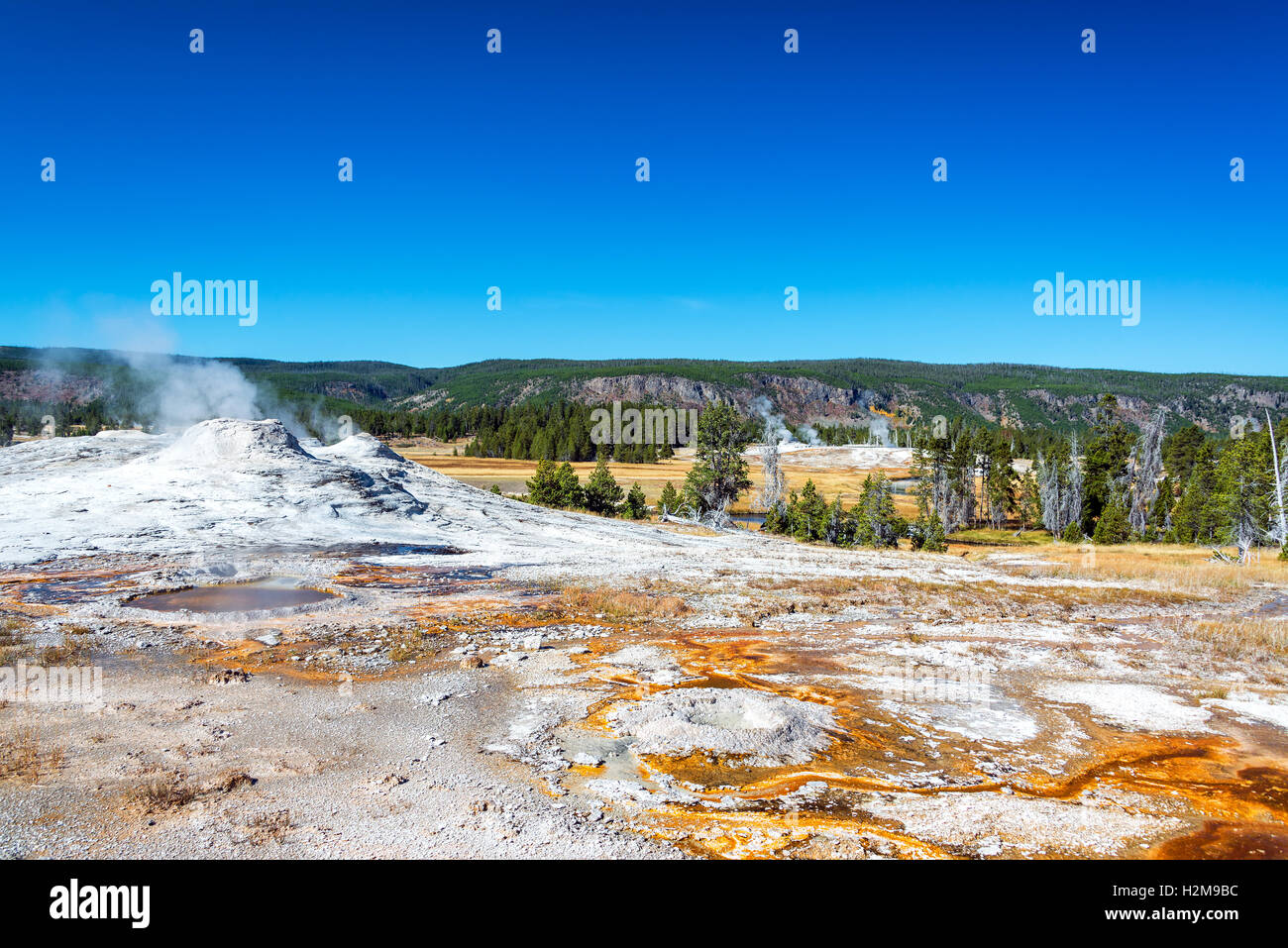 Geyser and landscape the Upper Geyser Basin in Yellowstone National Park - Stock Image