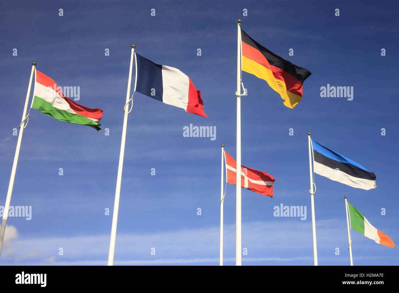 European Union International flags in Hull against a blue sky with wispy clouds. - Stock Image