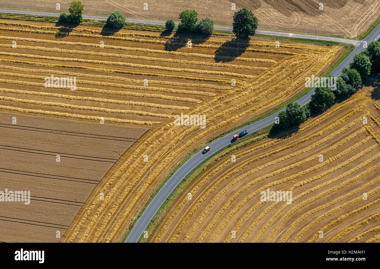 Aerial picture, road fork, road crossroad, harvested fields, country roads, curve, Welver, the Lower Rhine, - Stock Image