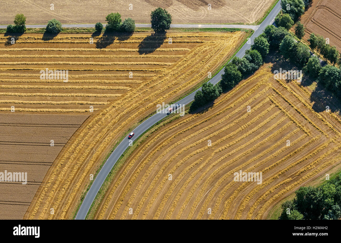 Aerial picture, road fork, road crossroad, harvested fields, country roads, curve, Welver, the Lower Rhine, Stock Photo