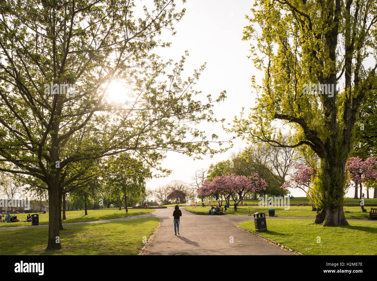 Roundwood Park, Harlesden, London, UK - Stock Image
