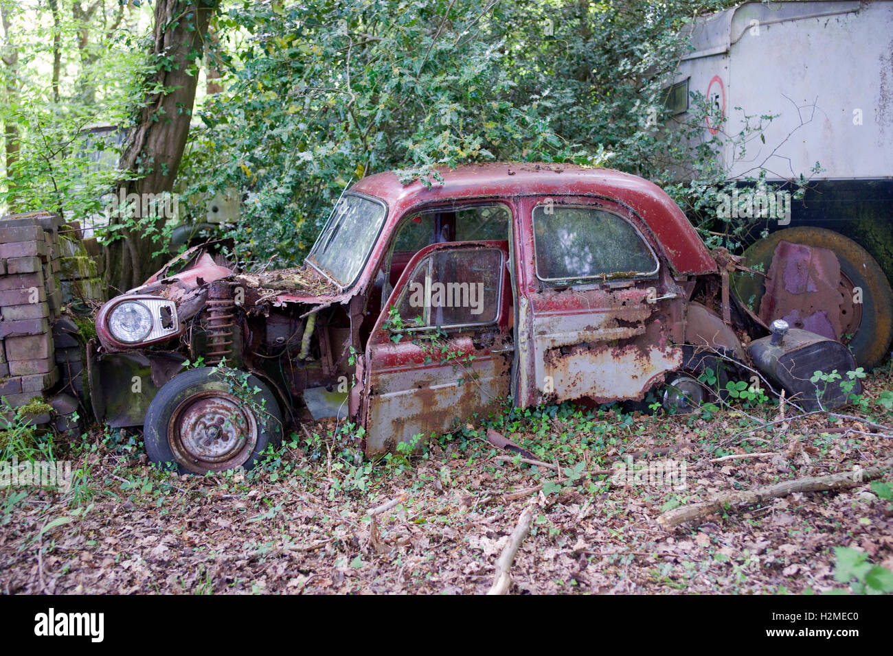 rusty old abandoned car in woods - Stock Image