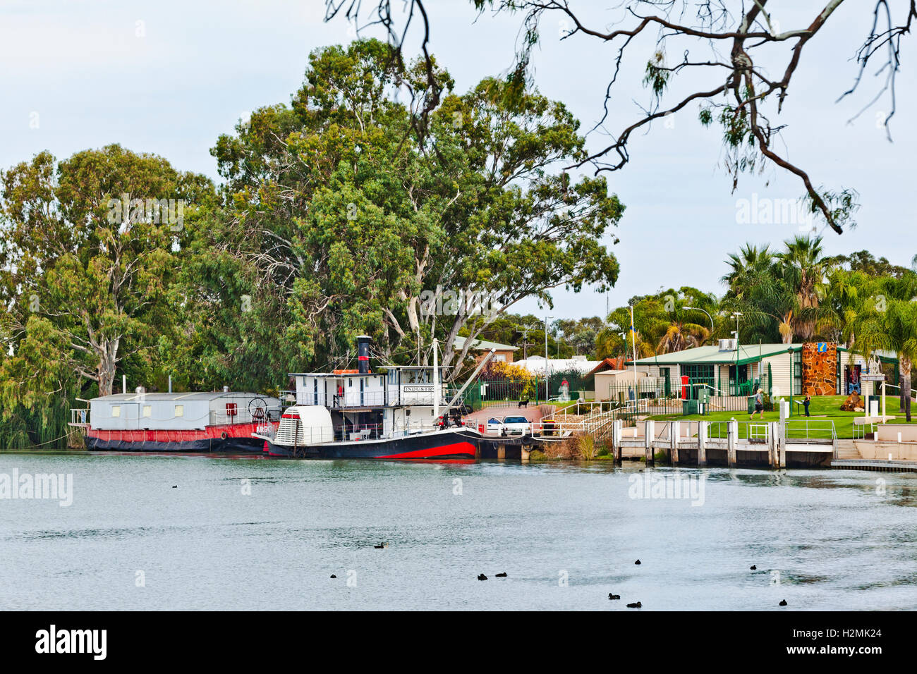 Renmark, South Australia, view of paddle steamer 'Industry' and the Argo Barge at the Renmark Visitor Information - Stock Image