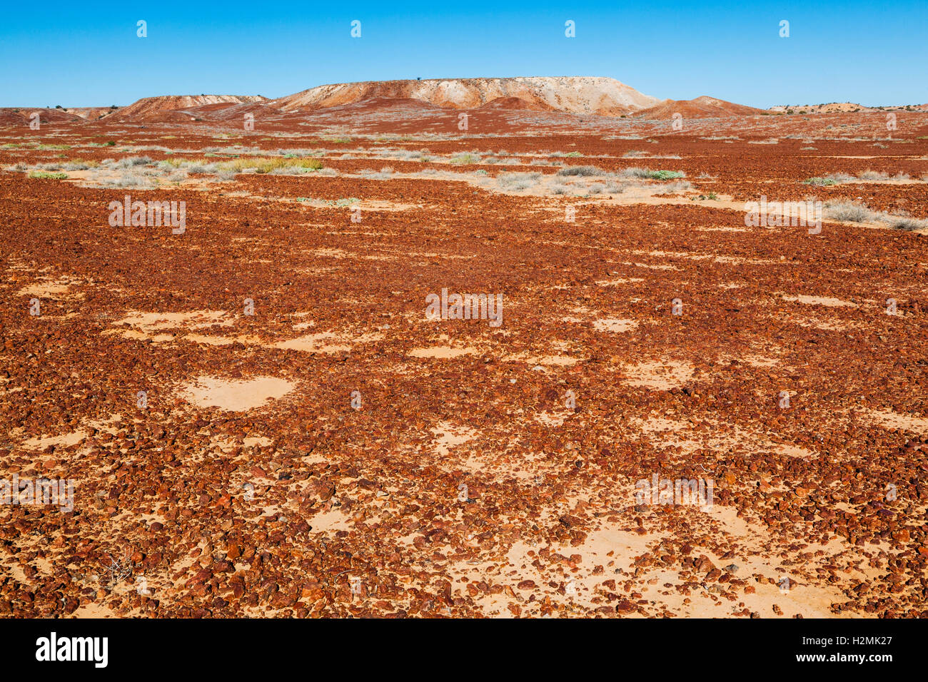 Gibber Plain in Sturt's Stony Desert at the Birdsville Track, South Australia - Stock Image