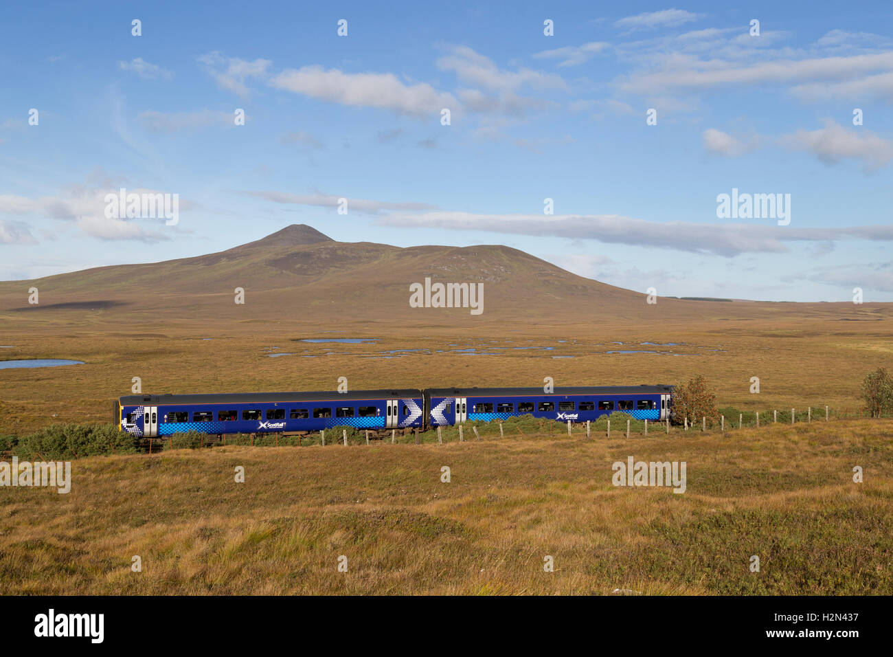 Scotrail train in Sutherland, Highland Scotland - Stock Image