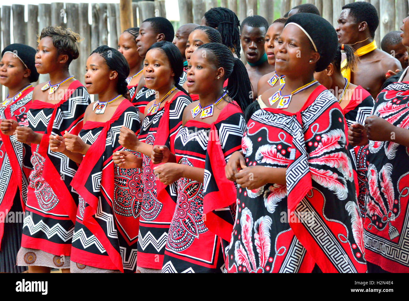 Traditional Swazi dancing  display by the troupe at Mantenga Cultural Village, Ezulwini Valley, eSwatini formerly - Stock Image