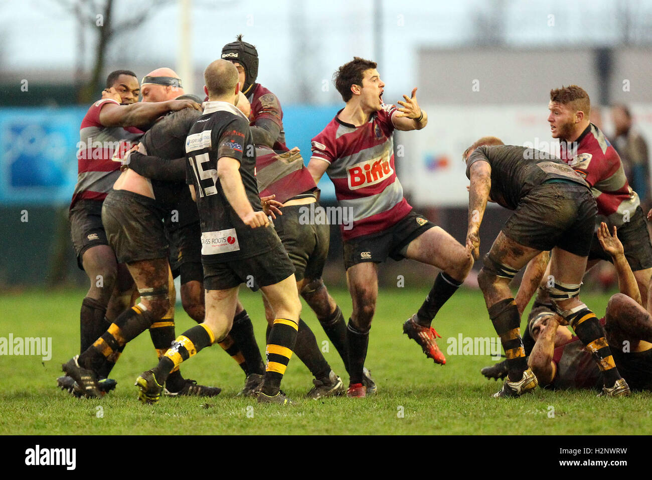 Tempers flare during the first half resulting in the sending off of a Barking player - Barking RFC vs Tring RFC - Stock Image