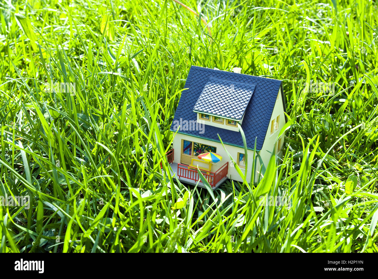 house on grass - Stock Image