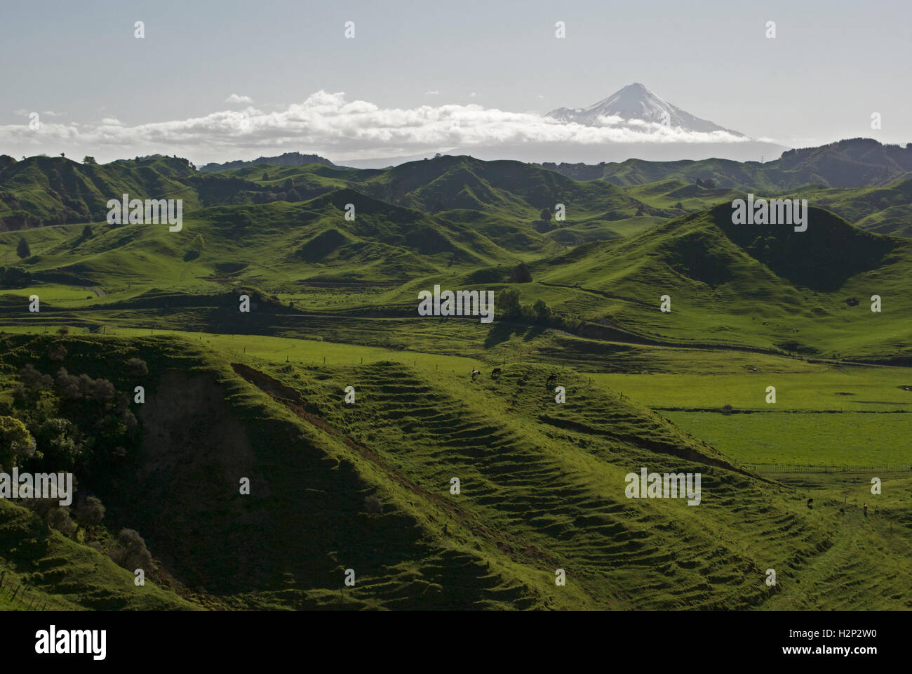 A hazy view of Mount Taranaki from the Forgotten Highway. - Stock Image