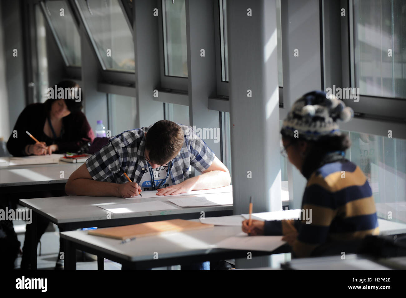 STOCK IMAGE College students work hard on their education in the classroom. - Stock Image