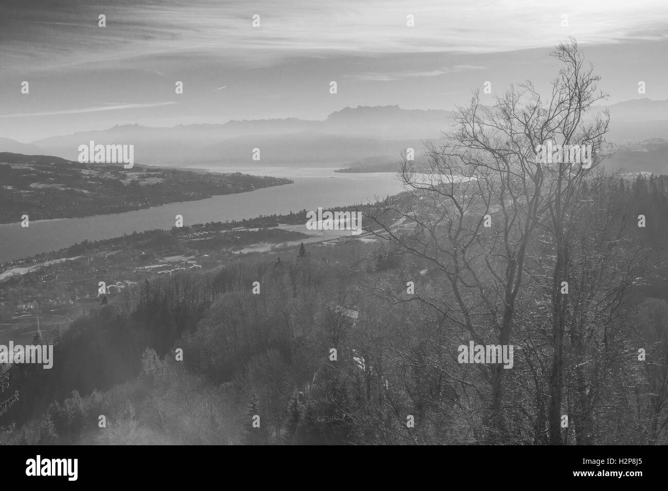 View of Lake Zurich from Uetliberg Mountain. Switzerland - Stock Image