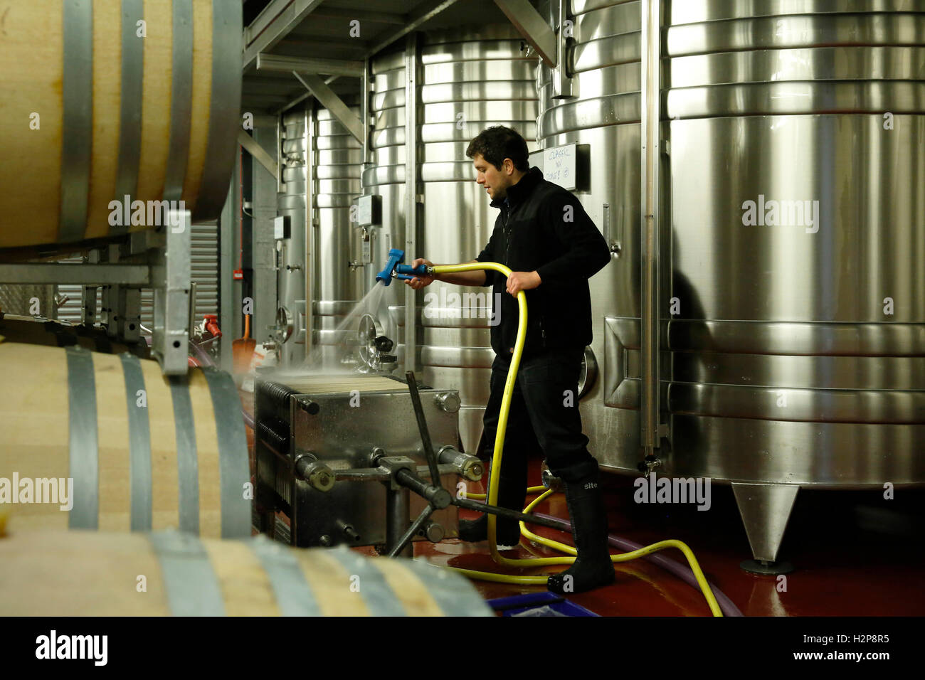 Winemaker Antoine Arnault hoses down filtration equipment at the winery of Hambledon Vineyard situated on the South - Stock Image