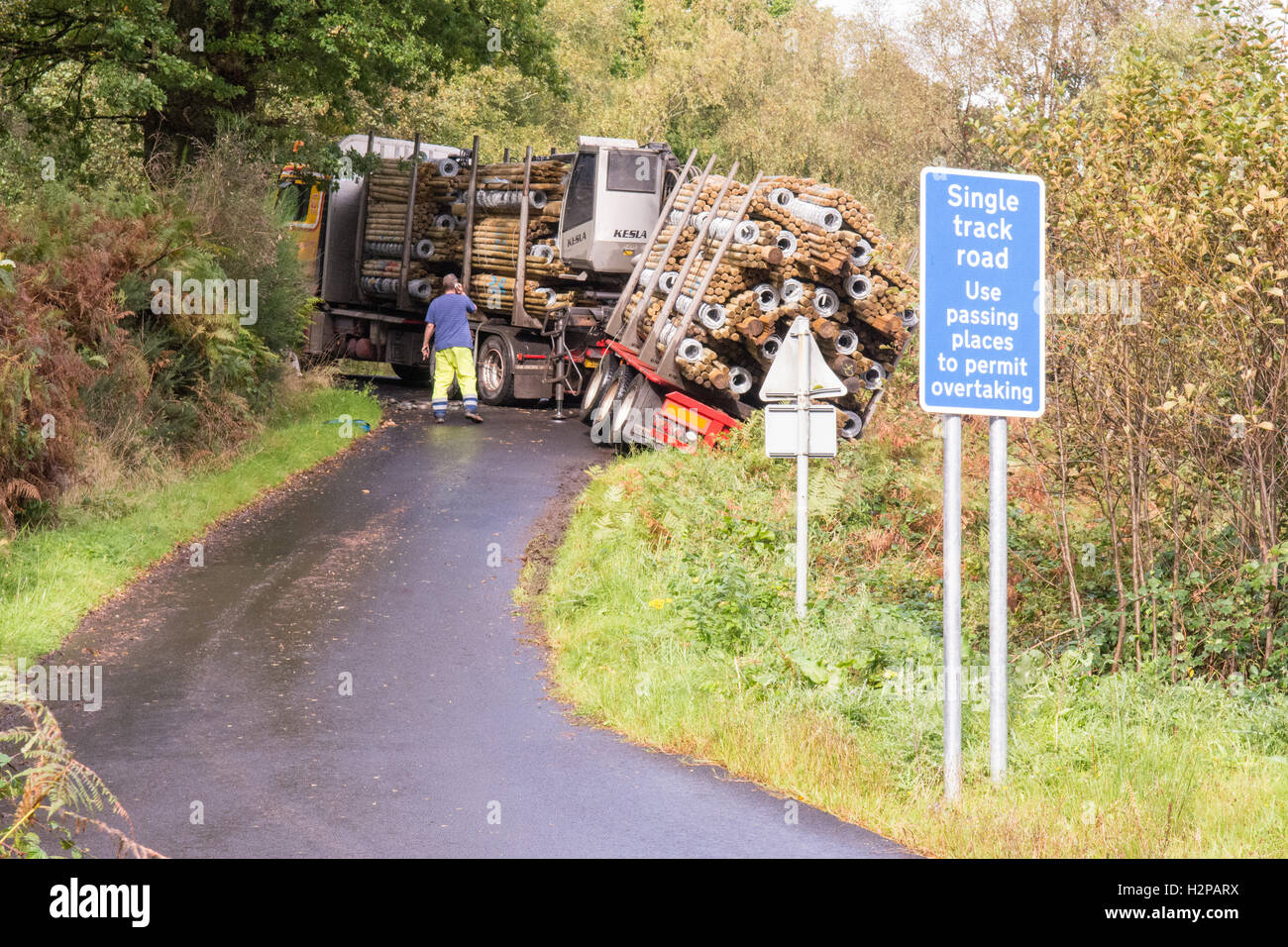 large articulated timber lorry carrying timber fencing partially slipped off narrow country road in Scotland, UK - Stock Image