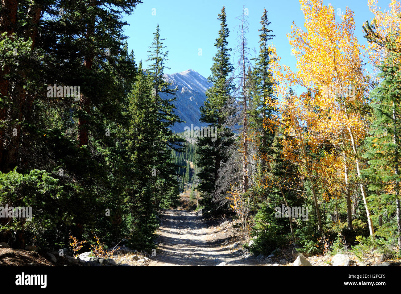 Colorado hiking trail near Mt Antero in Chaffee County Colorado.  Also known as the Baldwin Gulch Road, four wheel - Stock Image