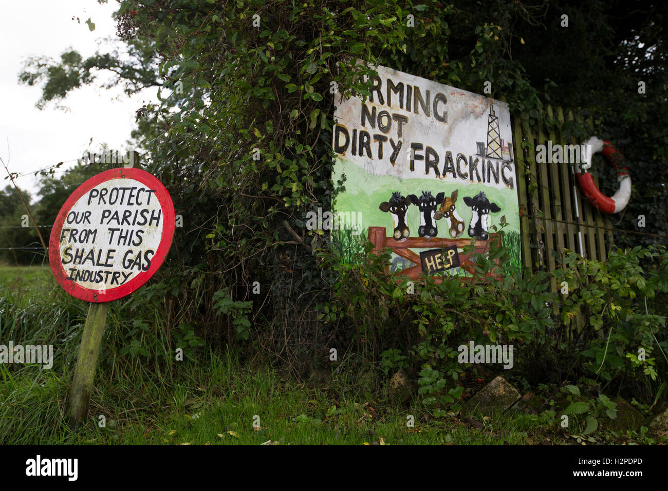 Anti-fracking signs in the village of Wharles, close to the proposed site at Roseacre Wood, Lancashire where fracking - Stock Image