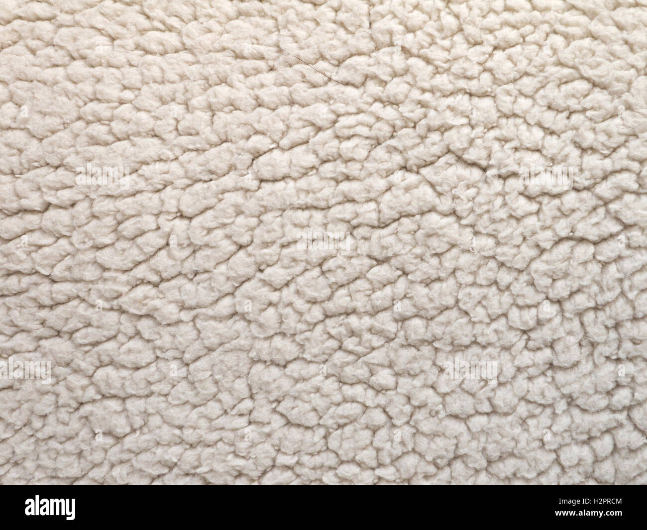 White Sheep Shearling Wool Background Stock Photo