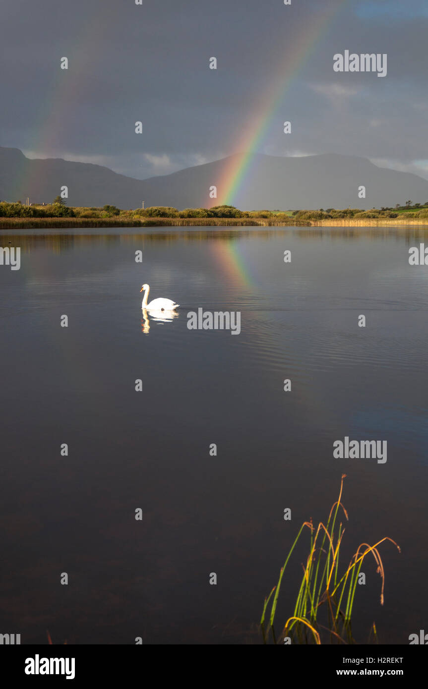 Lake Shanaghan, Ardara, County Donegal, Ireland weather. October 1st 2016. A rainbow is reflected in the lake as - Stock Image