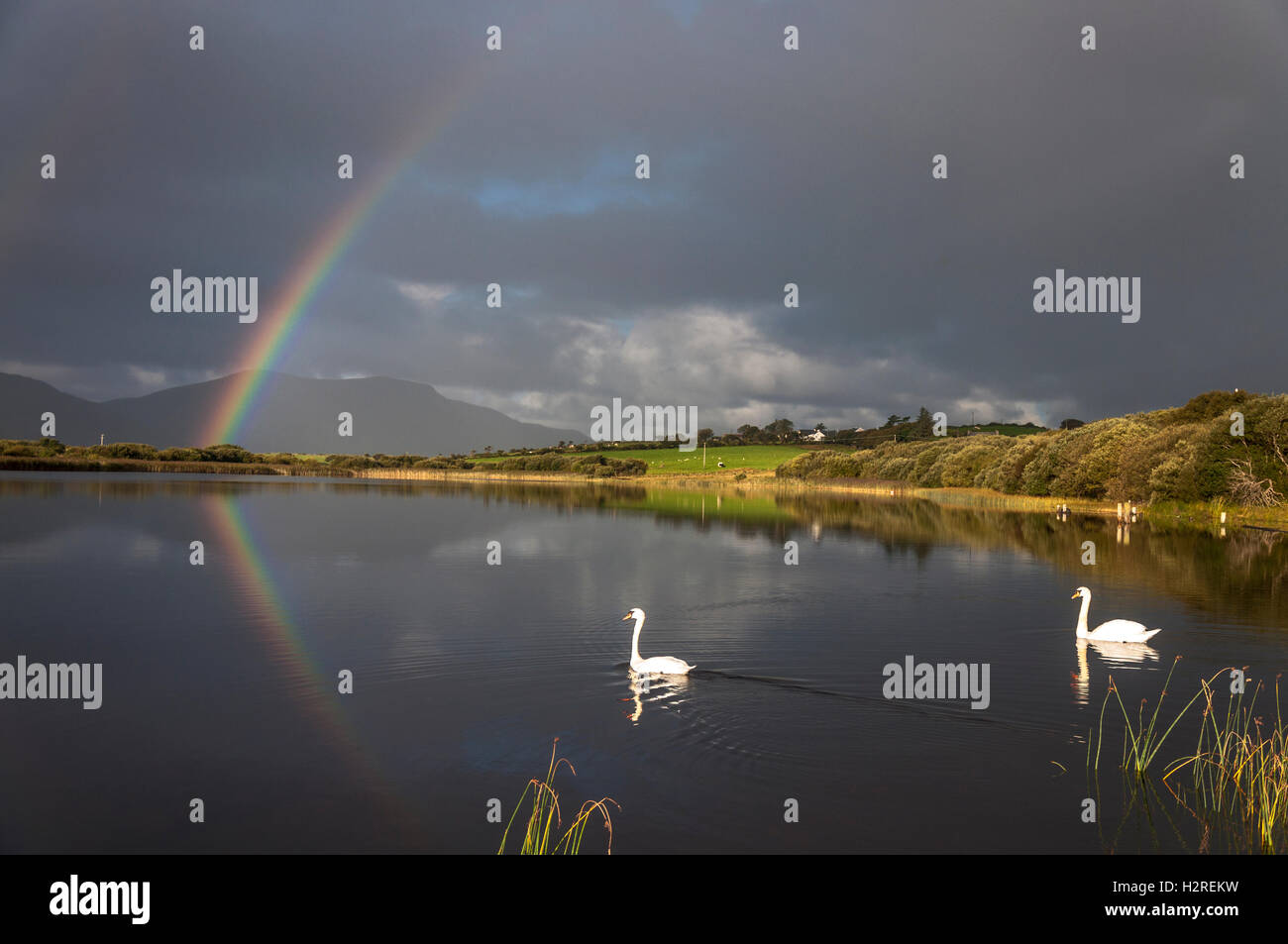 Lake Shanaghan, Ardara, County Donegal, Ireland weather. October 1st 2016. A rainbow is reflected in the lake as Stock Photo
