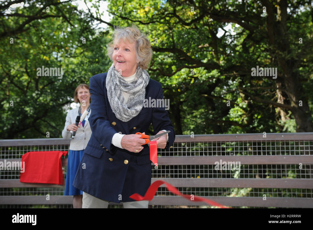 Actor Dame Penelope Keith cuts a ribbon and officially opens the Compasses Bridge on behalf of the Wey & Arun - Stock Image