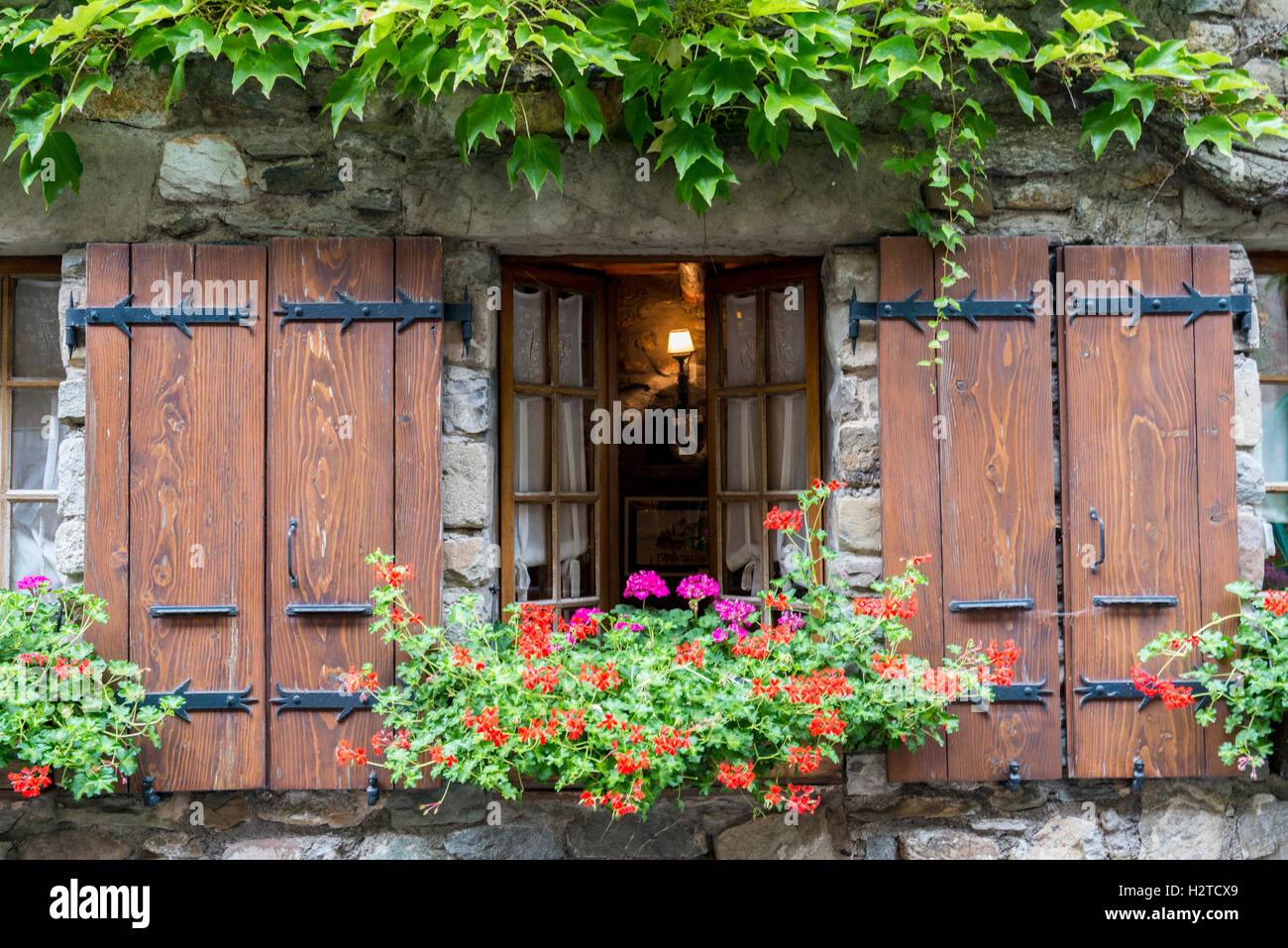 Ivy surrounding a window with shutters flower box, medieval historic village of Yvoire, Haute-Savoie, France - Stock Image