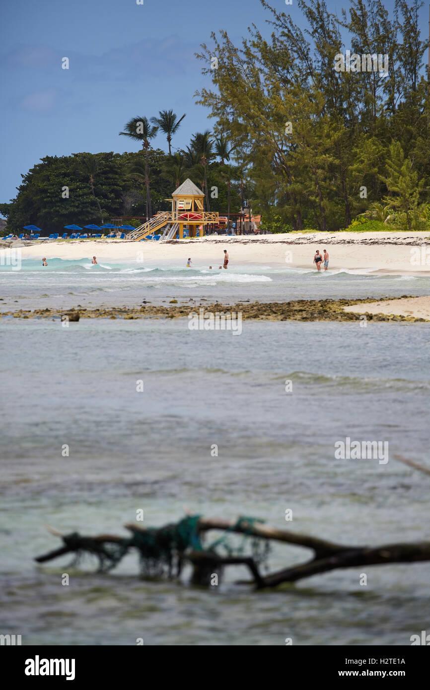Barbados Hastings Bay hut lifeguard   golden sand beach palm trees coastal sea pretty landscape copyspace blue sky - Stock Image