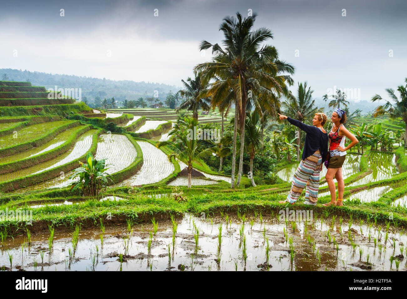 Two tourists in Jatiluwih rice terraces. Bali. Indonesia, Asia. - Stock Image
