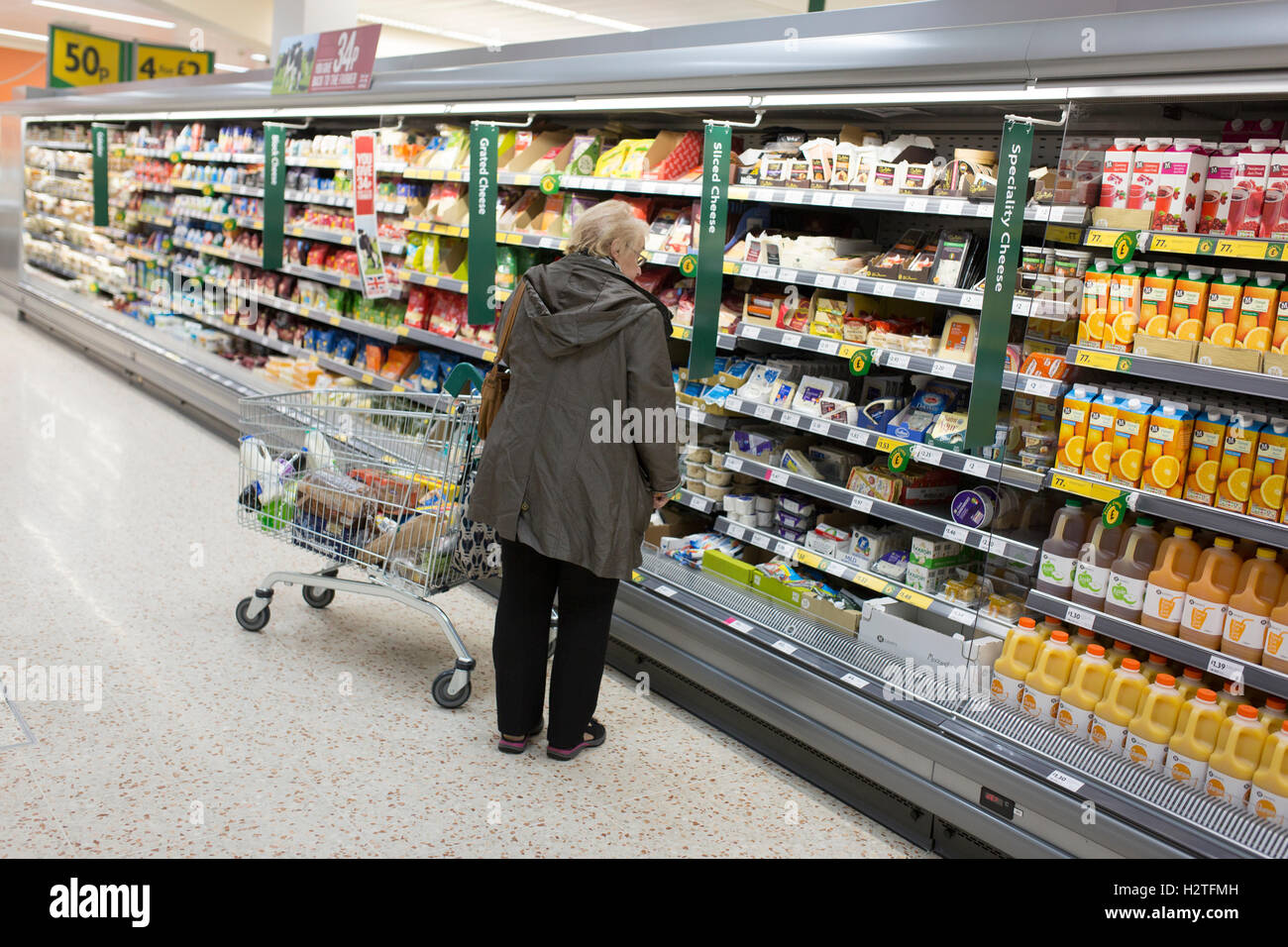 A woman shopping in a Morrisons supermarket - Stock Image