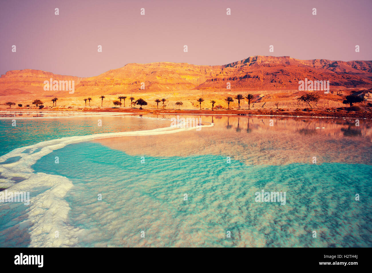 Dead Sea seashore with palm trees and mountains on background - Stock Image