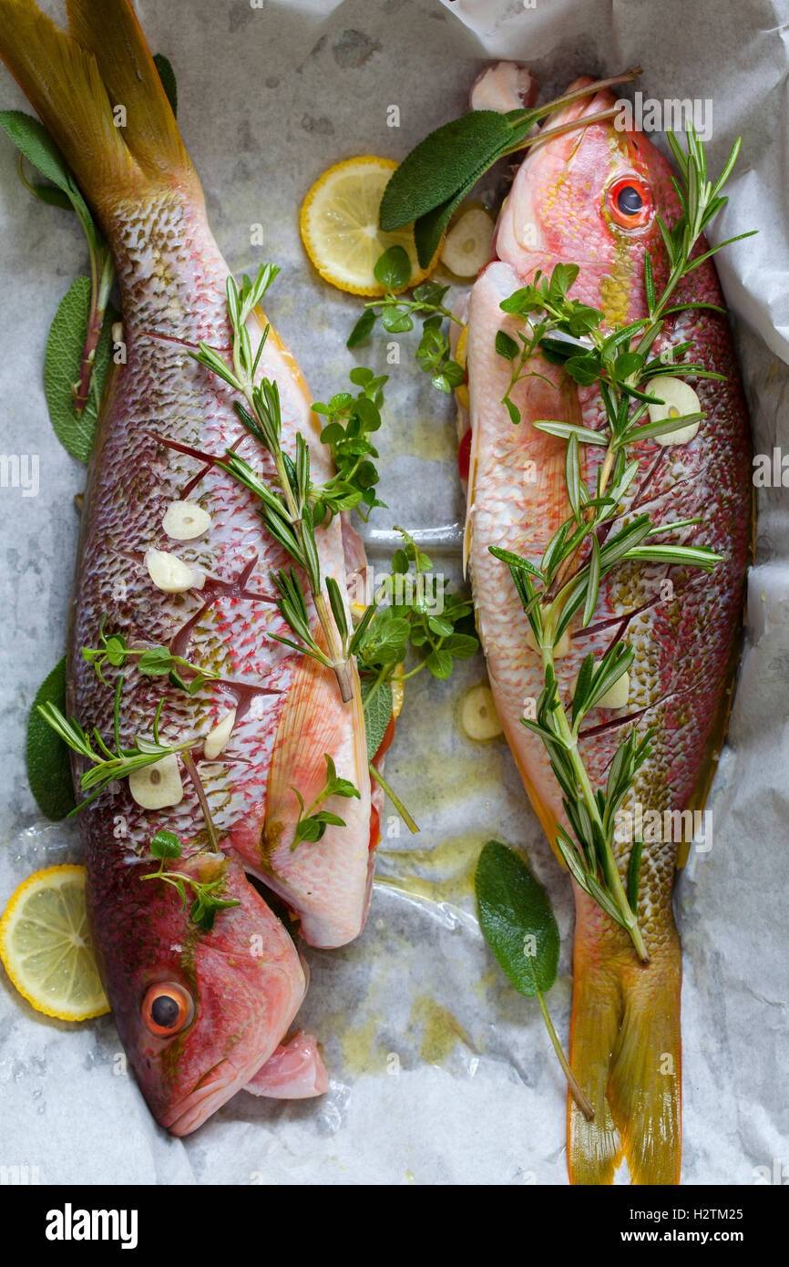 Red snappers ready for baking, with rosemary, thyme, lemon and garlic - Stock Image