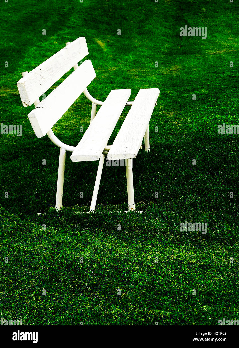 Peachy Rows Of White Park Benches For Sitting On Green Grass Stock Alphanode Cool Chair Designs And Ideas Alphanodeonline