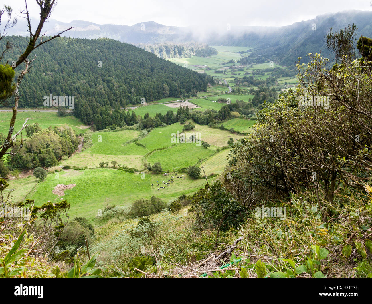 Hidden Valley. Between craters is a hidden agricultural valley, a patchwork of pastures and forests on the caldera - Stock Image