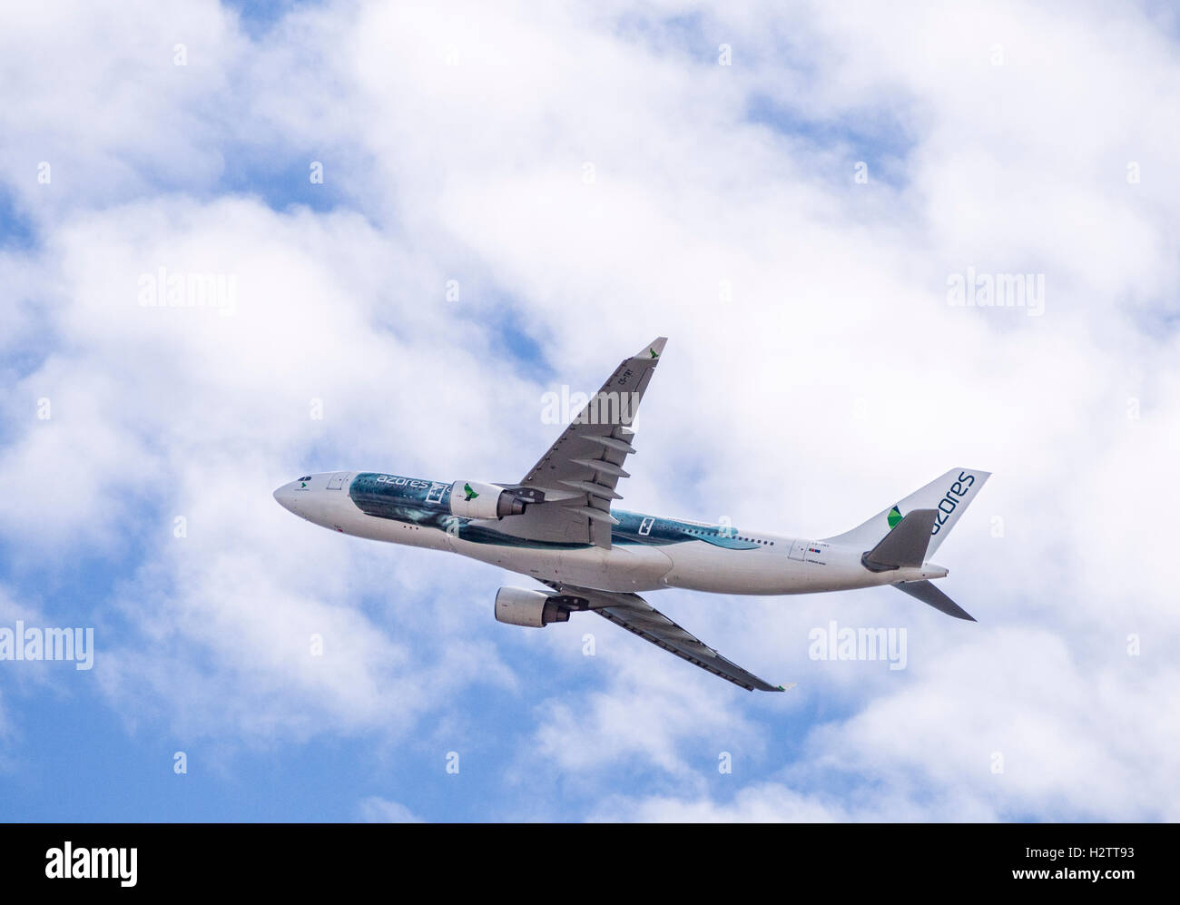 Azores Airlines' first A330 takes off over Ponta Delgada. An Azores plane in its 2016 livery takes off and flies - Stock Image