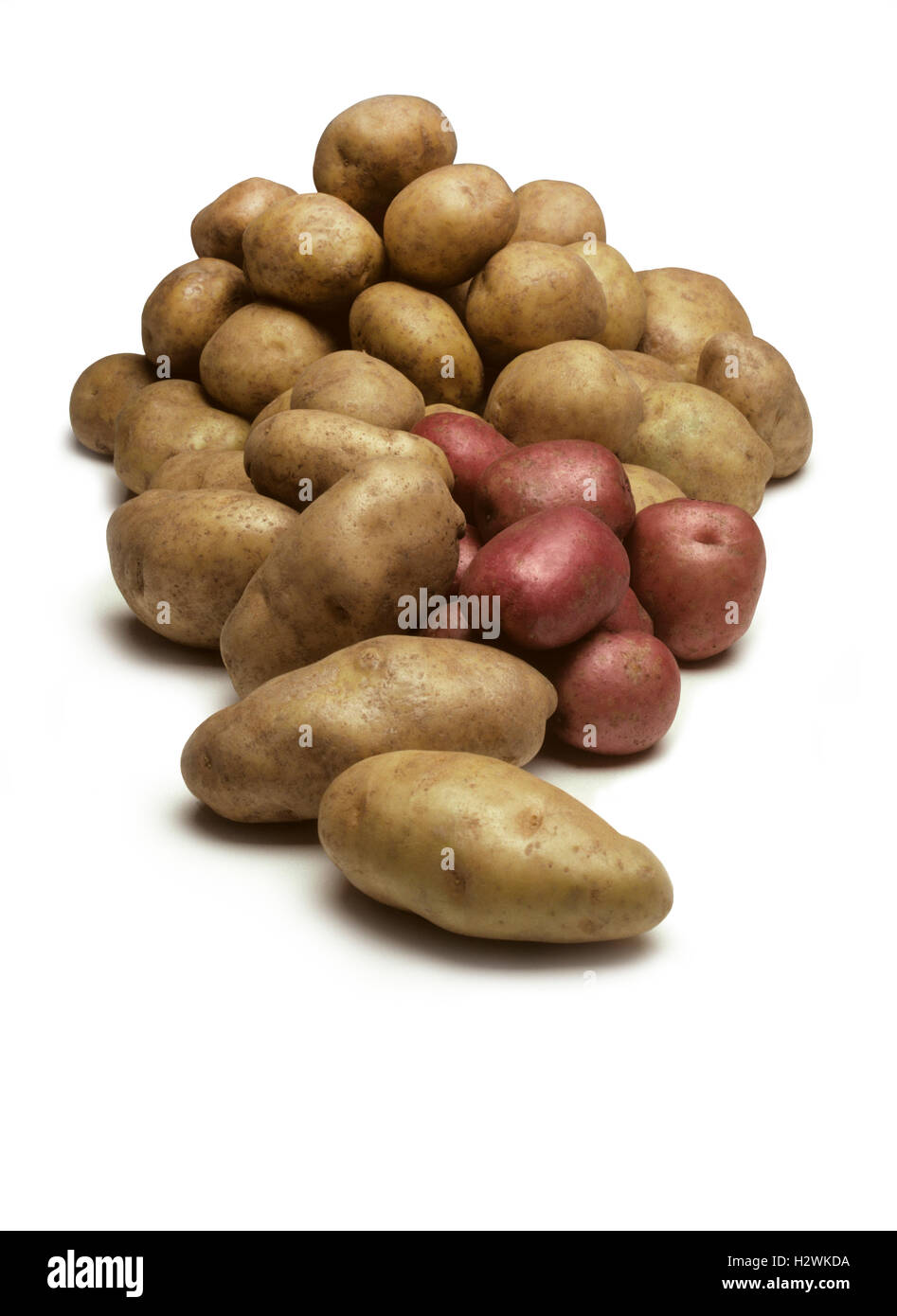 A pile of various types of potatoes isolated on a white background - Stock Image