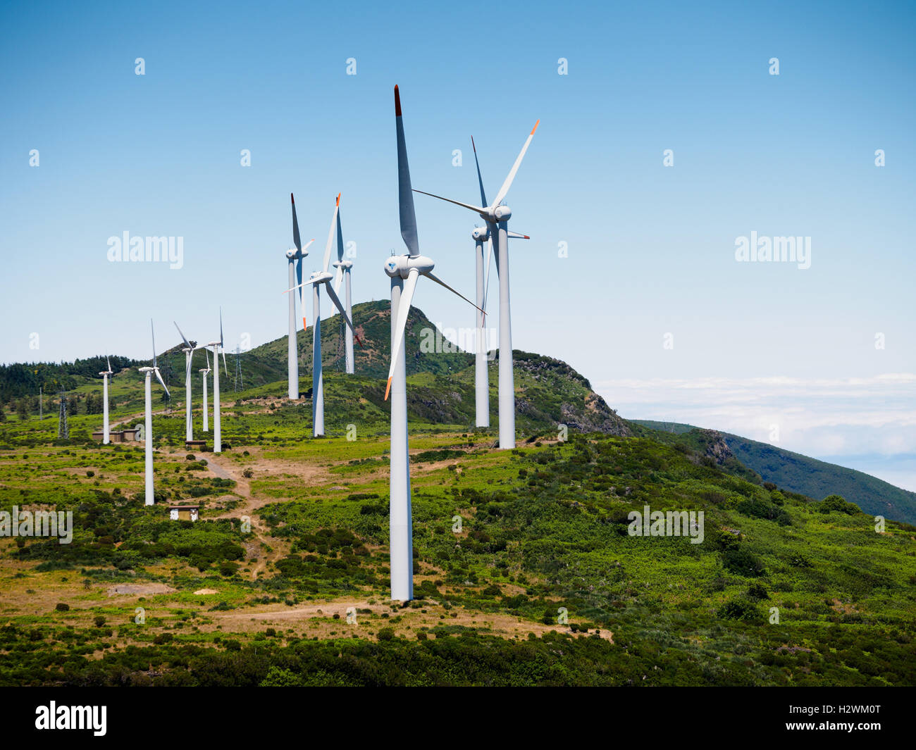 Madeira: Windmills on the Paul da Serra plateau, seen from the Bica da Cana hill - Stock Image