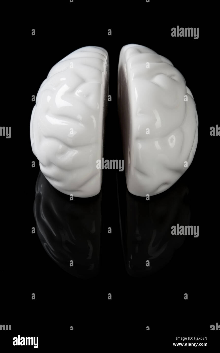 Left and right brain. - Stock Image