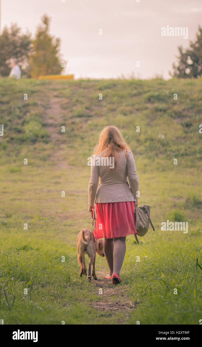 rear view young adult overweight woman walking dog summer - Stock Image