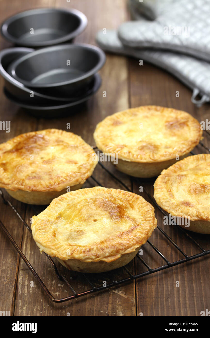 homemade aussie meat pie, close up - Stock Image