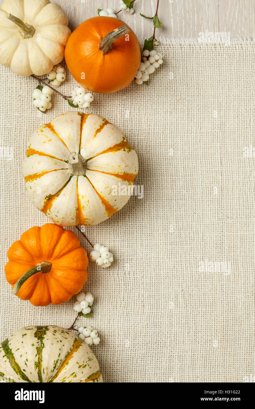 Miniature Pumpkins On Rustic Wood And Burlap Cloth Background Simple Natural Country Style Fall Autumn Decorations