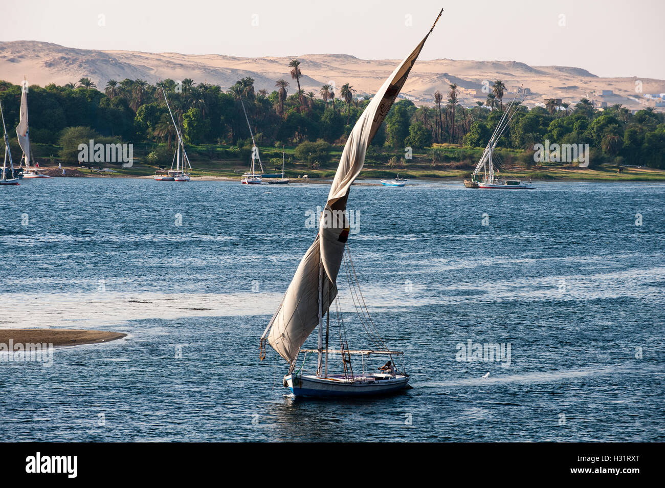 Egypt. Aswan stands on the east bank of the Nile. A felucca is a traditional wooden sailing boat. - Stock Image