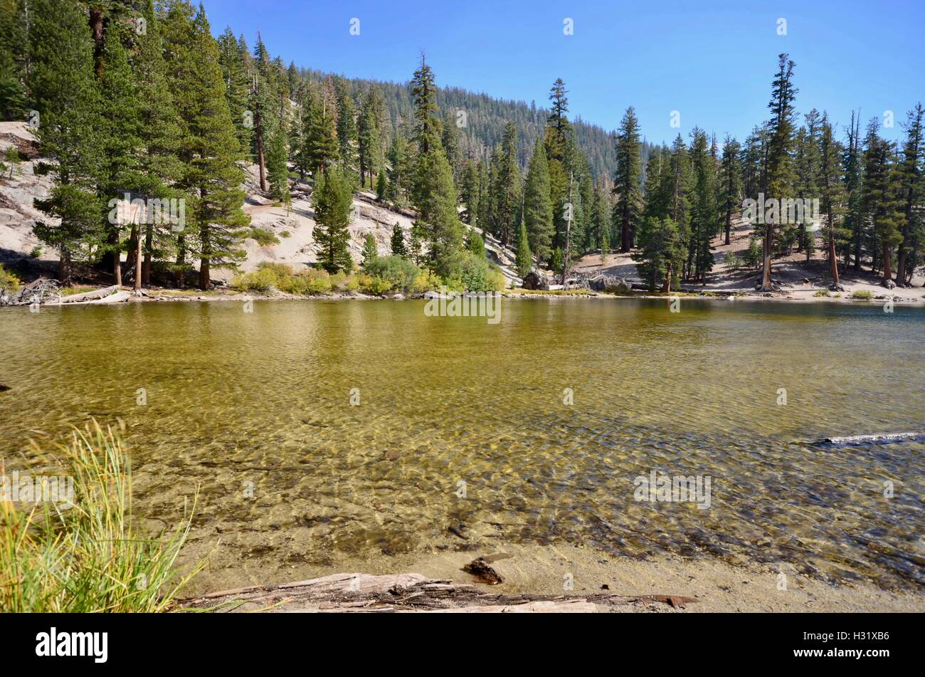 A lake in the Devils Postpile National Monument - Stock Image
