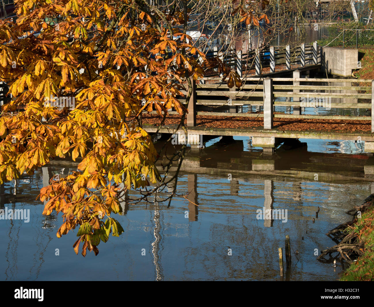 the city of leer in frisia - Stock Image