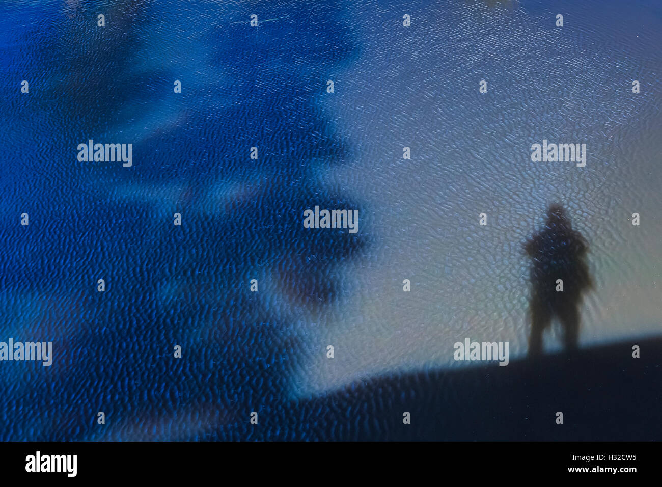 Photographer's shadow on Lake of the Woods in the Desolation Wilderness, Eldorado National Forest, Sierra Nevada, - Stock Image