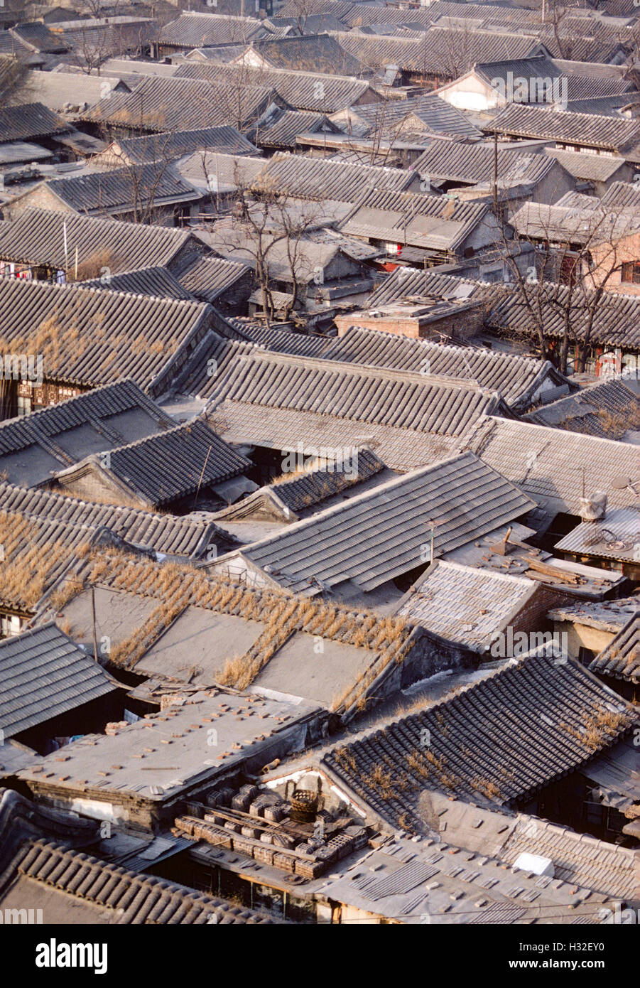 Old courtyard houses in the center of beijing before for House with courtyard in center