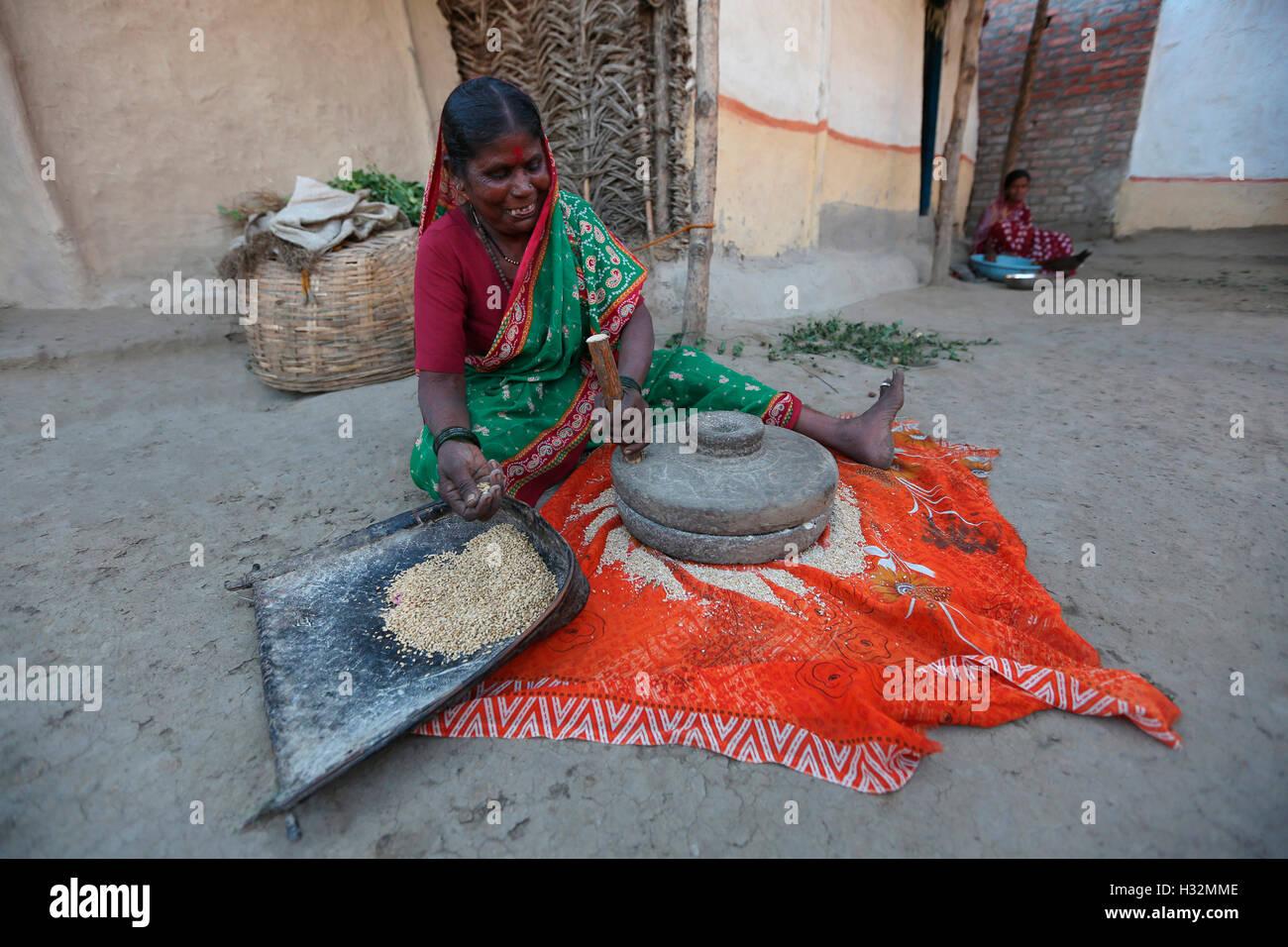 Woman pounding grains. ANDH TRIBE, Injegaon village, Maharashtra, India - Stock Image