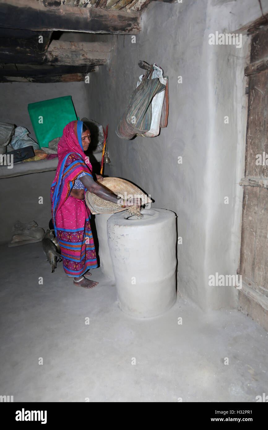 Tribal Woman storing grains in grain storage, KHAIRWAR TRIBE, Chiniya village, Dist Balrampur, Chattisgarh, India - Stock Image