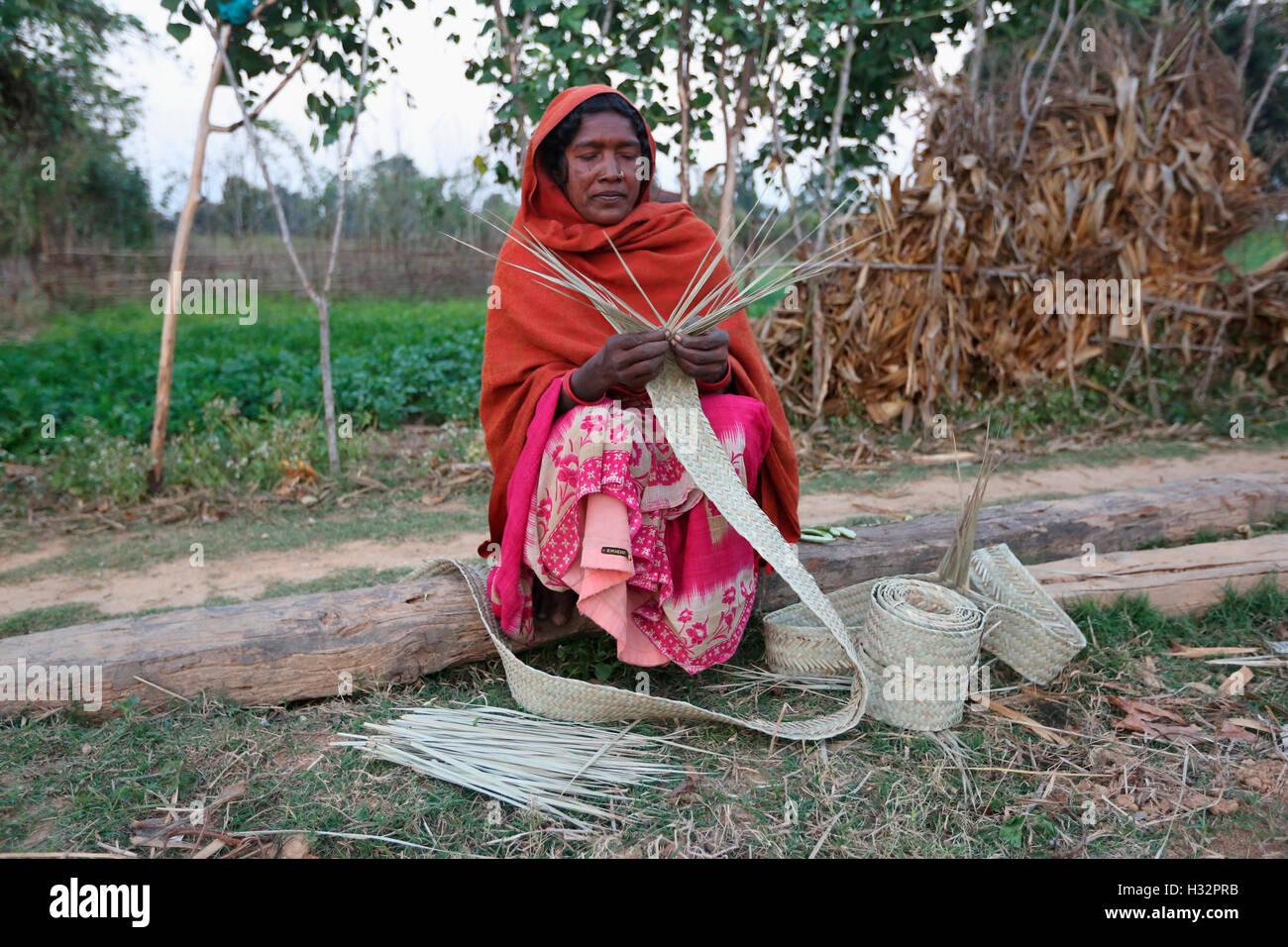 Tribal Woman making mat, KHAIRWAR TRIBE, Chiniya village, Dist Balrampur, Chattisgarh, India - Stock Image
