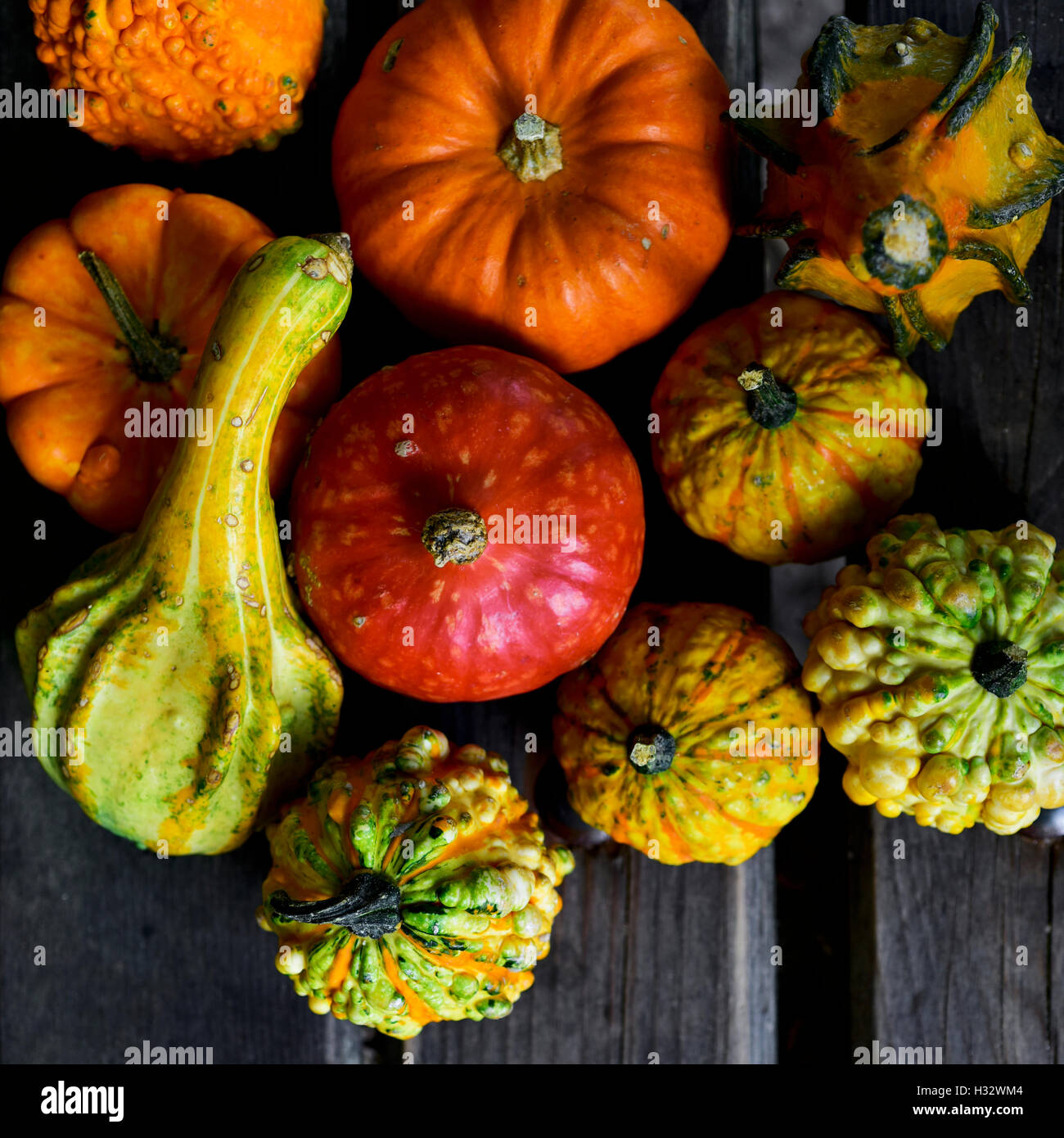 high-angle shot of some different pumpkins on a rustic wooden slates surface - Stock Image
