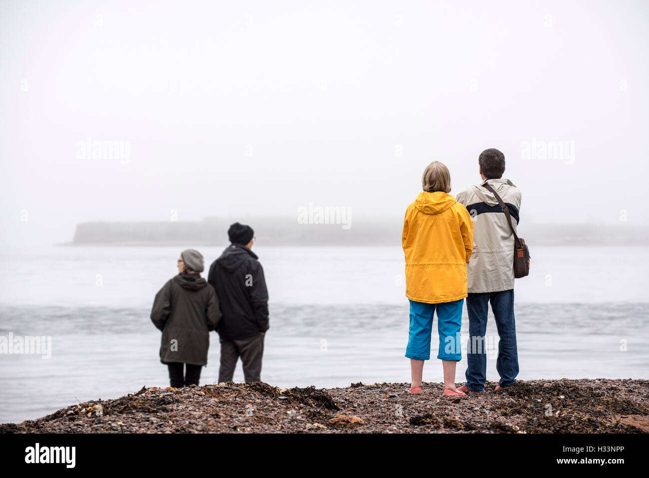 Whale and dolphin watchers looking for marine wildlife at Chanonry Point in the mist, Moray Firth, Scotland, UK - Stock Image