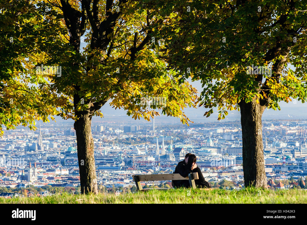"""Wien, Vienna: View of Vienna from the Hill 'Himmel"""", young couple at park bench, 00., Wien, Austria - Stock Image"""