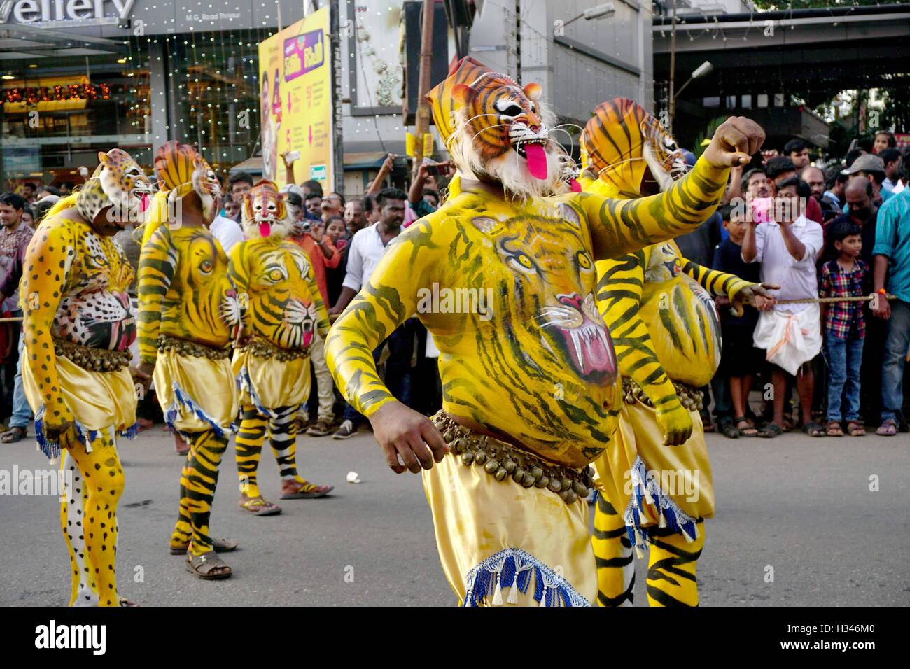 Trained dancers with their carefully painted bodies guise of tigers perform the famous Pulikali streets Thrissur - Stock Image